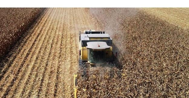 Tarım Üfe Temmuzda Yıllık Bazda 16,28 Arttı