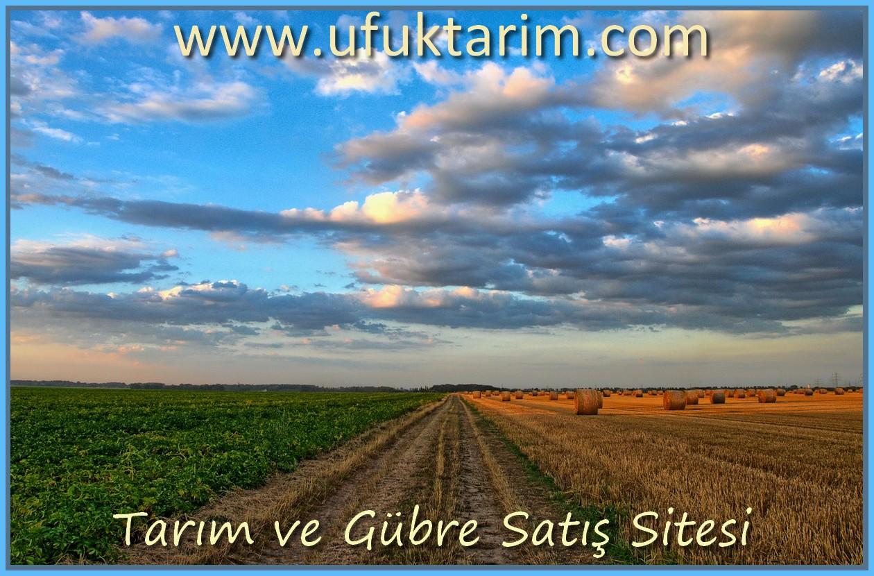 Türkiye'de Tarımsal Ürünlerin Öncü İsmi