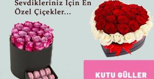 Beylikdüzü Çiçekçi Sayıları...